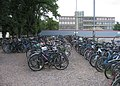 Lines of bikes - geograph.org.uk - 1084662.jpg