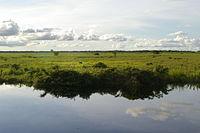 Vista de la Region de los Llanos del Beni