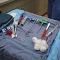 Load out for Bone Marrow Biopsy.jpg