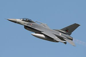 201 Squadron (Portugal) - F-16 Fighting Falcon of 201 Squadron