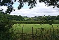 Looking SE across a tributary of the River Medway - geograph.org.uk - 1493110.jpg