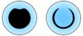 Loricaria-eye.png
