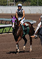 Los Alamitos Sept 2014 IMG 6824 edited-1 (15131062699).jpg