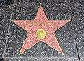 Los Angeles (California, USA), Hollywood Boulevard, Harrison Ford -- 2012 -- 5004.jpg