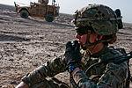 Lt. Ping Medvigy calls for fire 140718-Z-MA638-073.jpg