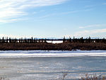 A frozen river passes through flat country. Short trees grow on the riverbanks; tall mountains are in the far distance.