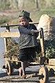 Madagascar (8575738658).jpg