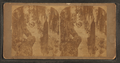 Magnolia cemetery, Charleston, S.C, from Robert N. Dennis collection of stereoscopic views.png