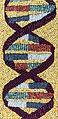 Maize DNA mosaic (full) 01.jpg