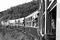 Matheran Mini Train - panoramio (4).jpg