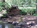 Meander in Blackpool Brook - geograph.org.uk - 187188.jpg