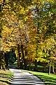Meienberg (Rapperswil-Jona) 2010-10-29 15-51-58.JPG