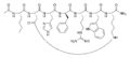 Melanotan II chemical structure.png