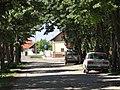 Mezőkovácsháza 2013-05-18, József Attila utca - panoramio.jpg