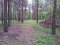 Mikolow, Poland - panoramio (11).jpg