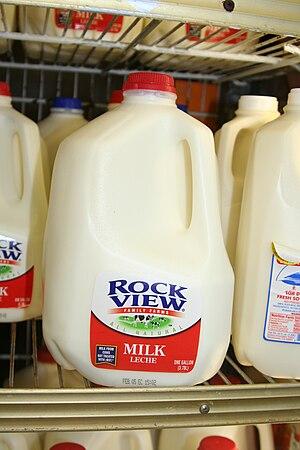 "English: A ""traditional"" gallon milk jug"