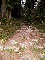 Miran Jani Track Just Start - panoramio.jpg
