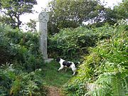 Modern stone cross at Sancreed Chapel and Well - geograph.org.uk - 230583