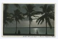Moonlight at Palm Beach, Palm Beach, Fla (NYPL b12647398-73879).tiff