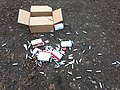 Mosa cream chargers fly-tipped at Bakers Hill car park 02.jpg