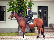 Norwegian mounted policeman, Oslo