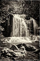 Mullet Falls.jpg