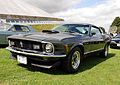 Mustang (3786235156).jpg