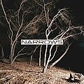 Narrowsep.jpg