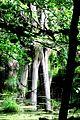 Nationalpark Jasmund - Modderstubben (9).jpg