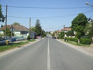 Negru Vodă, Constanța Town in Constanța, Romania