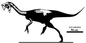 Nemegtomaia - Skeletal diagram showing known remains of the holotype specimen, MPC-D 100/2112