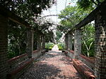 New Orleans Botanical Garden Walkway.jpg