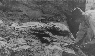 Photograph of the excavation of a skull at Ngandong