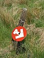 Non-standard road sign on forest track north of Whitehill - geograph.org.uk - 849787.jpg