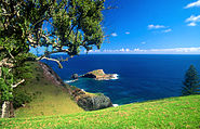 Norfolk Island Bird Rock