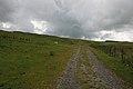 Northern slopes of Banc Gwyn - geograph.org.uk - 901666.jpg