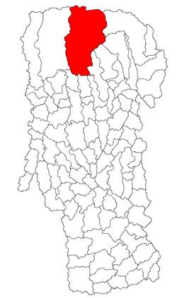 Vị trí của Nucșoara