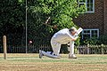 Nuthurst CC v. Henfield CC at Mannings Heath, West Sussex, England 038.jpg