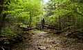 Oil Creek State Park On the Trail over a bridge.jpg