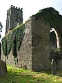 Old Church in Dungarvan - geograph.org.uk - 545065.jpg