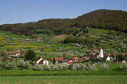 Oltingen – Panorama