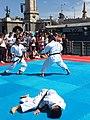 Olympic Days Paris June 2017 - Karatekas 04.jpg