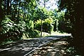 Once again, it is Mount Dandenong Tourist Road (38703577715).jpg