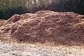 Onion skins and detritus composting - geograph.org.uk - 1516688.jpg