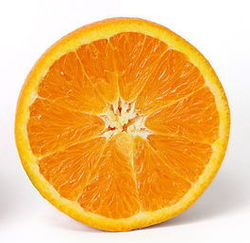 Orange cross section.jpg