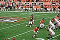 Oregon State Beavers v Wisconsin Badgers.jpg