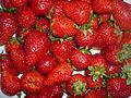 P1210594 Miâm! Les fraises!.JPG