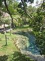 Palapas y cenote, Cenote Azul, Q. Roo, México. - panoramio.jpg