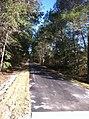 Palatka-Lake Butler Trail East Florahome.jpg