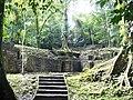 Palenque zona inexplorada.jpg